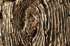 Holzbalken-Detail