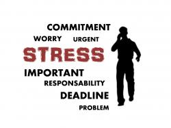 online-Coaching Torhaus Kotelow, Telefoncoaching, Einzelcoaching online, Gruppencoaching online, So gelingt Aufräumen, stress-494222_1280