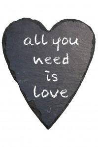 "Blog online-Coaching Torhaus Kotelow, Telefoncoaching, Einzelcoaching, Gruppencoaching, Schiederherz mit Schriftzug ""all you need is love"""